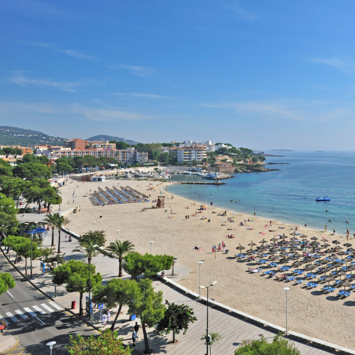Suncare Destination Image: Suncare Central Team - Majorca